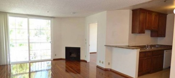 UCLA/Westwood Female Summer Sublet