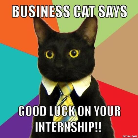 Image result for internship memes