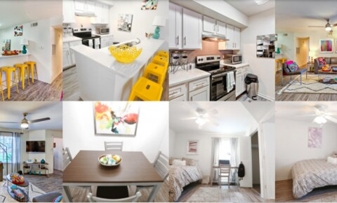 Sublets Near UCF Bedroom + Bathroom at Mercury 3100 available for University of Central Florida Students in Orlando, FL