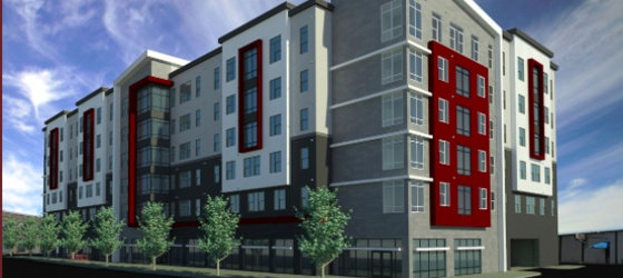 Find your Hive at Academy 65! Brand New Apartments near Sacramento State University!