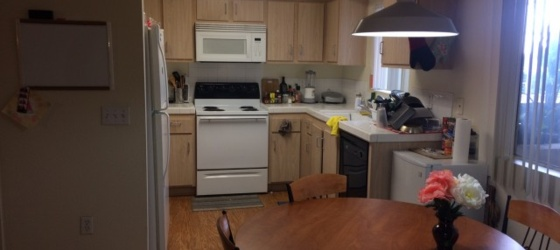 Female Sublet for Shared Room 1/1/19 Near SDSU Campus - $784