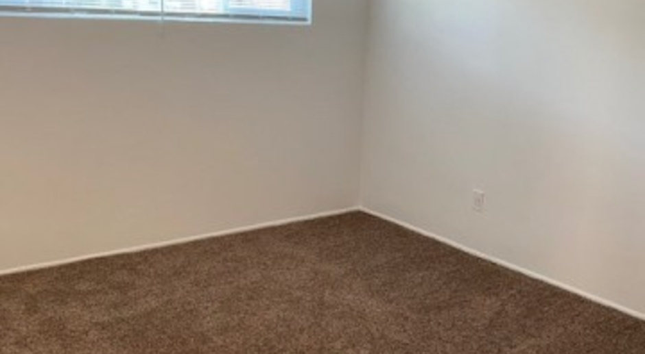 Come Home to More! Newly Renovated 1x1's Available for 21/22 Schoolyear!!!
