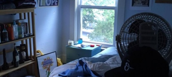 Tufts University sublet