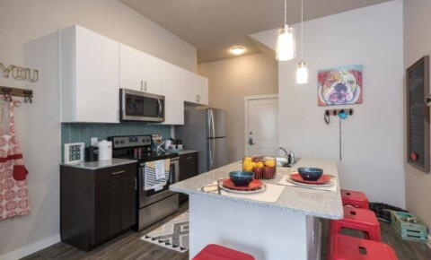 Sublets Near St. Thomas 30% OFF - now $597 a month - Furnished ensuite room for rent in downtown Houston for University of St Thomas Students in Houston, TX